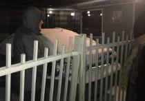 На Пресне орудует убийца кошек: он вешает животных на заборе
