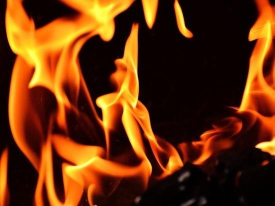 Два гаража и автомобиль сгорели в Петрозаводске