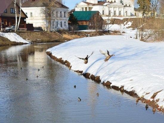 На костромских реках начался ледоход