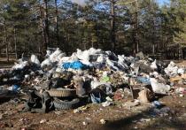 Байкальский мусор отдали частникам