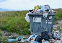 Карельские мусорщики взбунтовались против регионального оператора