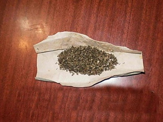 Житель Саранска отправился в Санкт-Петербург с марихуаной в кармане