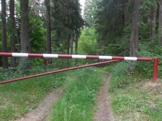 Холмогорские лесопромышленники драли с местных жителей плату за проезд в лес