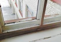 «В каждой второй российской школе — грязь, плесень на стенах и текущие крыши»