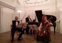 Современная академическая музыка не просто есть — она, наконец, стала обретать свое лицо, узнаваемость и востребованность (не в прикладном, а в самоценном виде), что и подтвердил завершившийся фестиваль русскоязычных исполнителей в швейцарском Санкт-Галлене