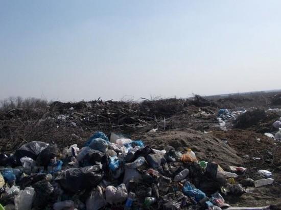 В Воронежской области нашли гигантскую незаконную свалку