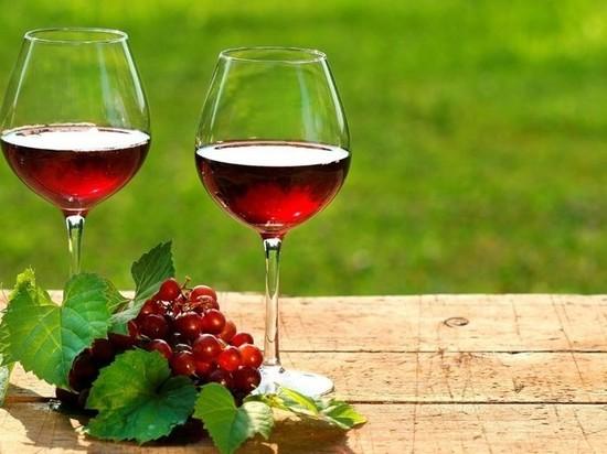 В ИРНИТУ на Студенческой научной неделе состарят красное и сухое вино