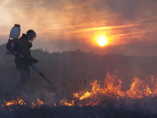 «МК» в Питере» узнал, как выйти живым из огня