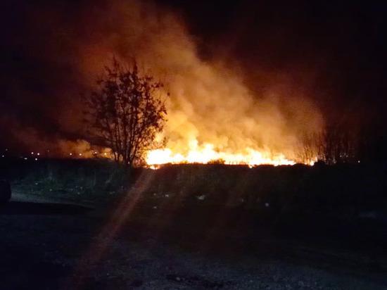 Пал сухой травы в Туле закончился сильным пожаром