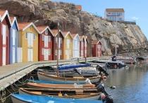 Разрешая мигрантам жить по своим правилам, скандинавы нарушают собственные