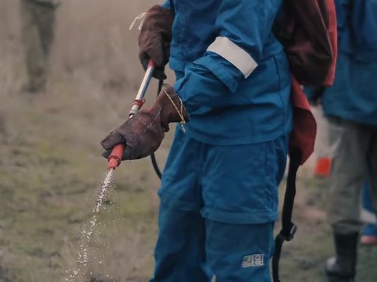100 квадратов камыша выгорели в Астрахани