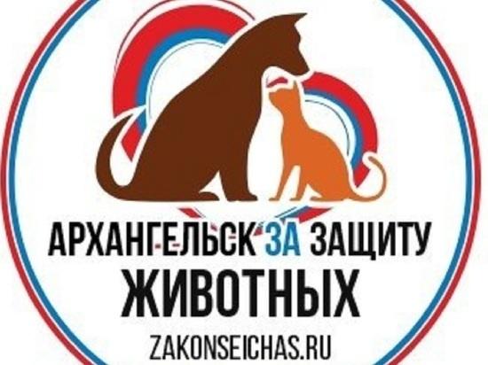 Сегодня в Архангельске пройдёт пикет в защиту животных