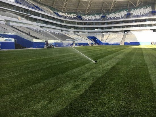 На поле стадиона «Самара Арена» уложили 40 процентов газона