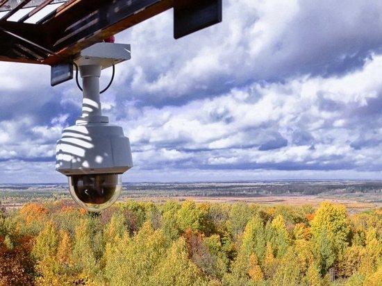 Авиапатрули и видеокамеры будут сообщать о пожарах в лесах Костромской области