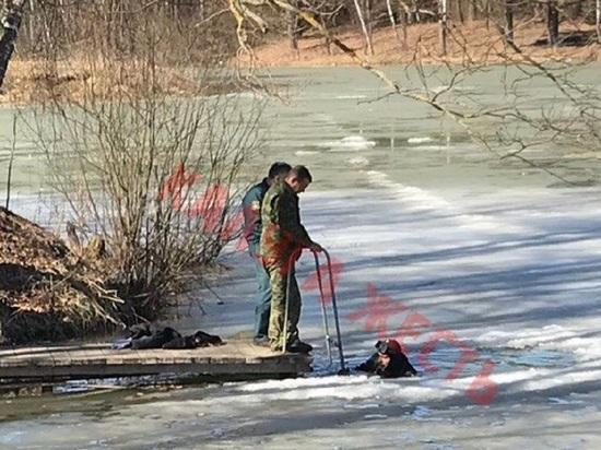 Мужчина нырнул в канищевский пруд в Калуге и утонул