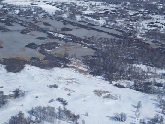 Алтайский край просит у государства компенсации за паводок