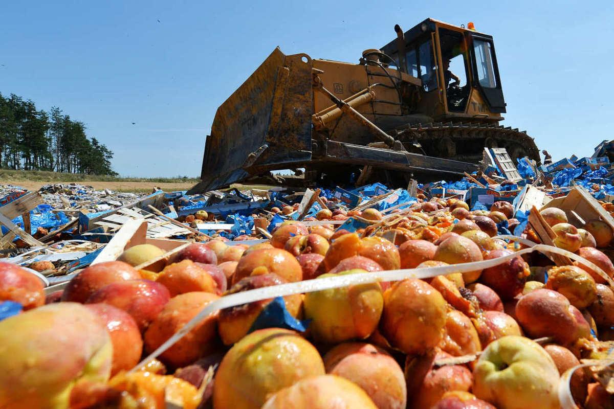 Картинки по запросу трактора давят санкционку