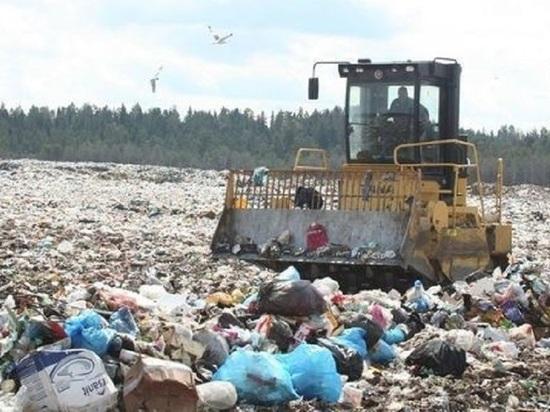 Как в  Карелии поделят рынок отходов