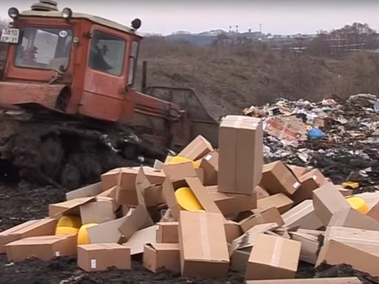 В Севастополе сожгли 109 кг немецких и украинских сыров