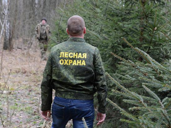 На майские праздники в регионе усилят охрану лесов