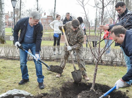Врио губернатора принял участие в озеленении дворцового комплекса Ольденбургских