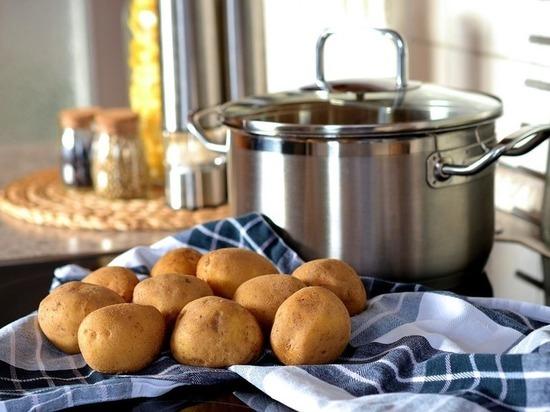 В Липецке открыли завод по производству картофеля фри