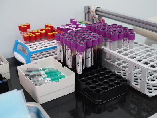 4441 нижегородец вошел в национальный регистр доноров костного мозга