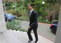 Засада поимени Асад