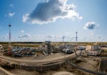 Нефтяная компания «Нефтиса» Михаила Гуцериева начнет использовать искусственный интеллект для разработки месторождений