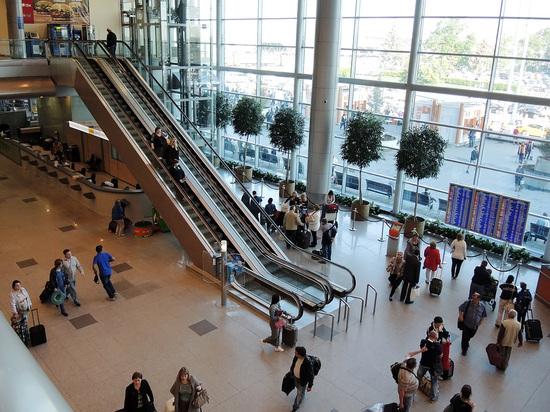 В московских аэропортах запретили кататься на животных