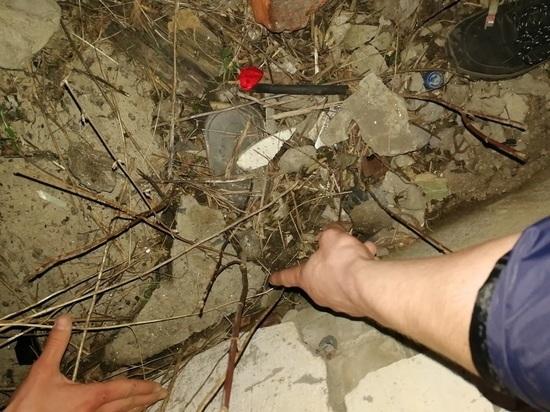 Двум жителям Тамбова грозит 20 лет тюрьмы за распространение наркотиков