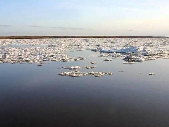 Сухонская и Важская волны ледохода соединились сегодня ночью в Архангельской области