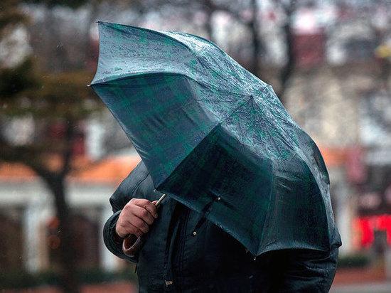 В Ульяновской области ночью ожидаются дожди и сильный ветер