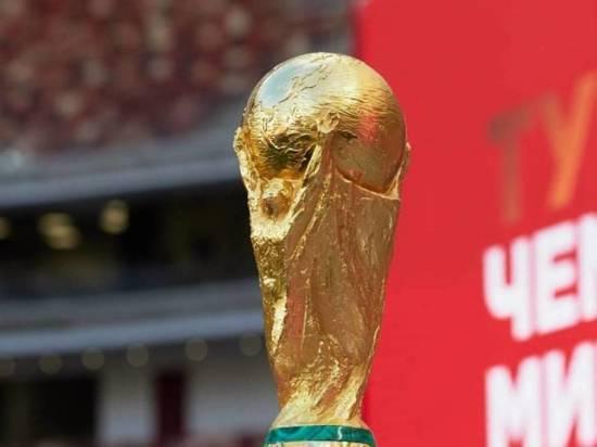 В Казань 17 мая привезут кубок чемпионата мира по футболу