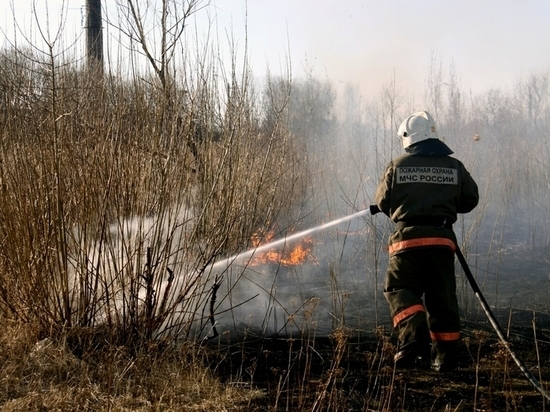 Более десяти загораний сухой травы за сутки потушили в Костромской области