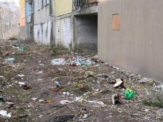 О проблеме мусора во Владимире