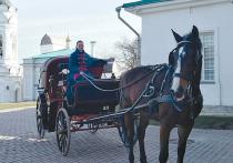 Подробности ЧП в парке: лошадь чуть не задушила китайского туриста