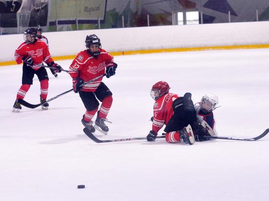 Разыграны награды в популярном хоккейном турнире «Золотая шайба»