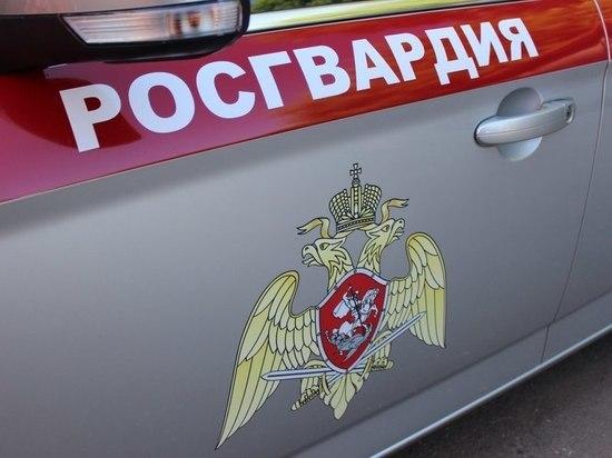 В Курской области сотрудники Росгвардии задержали мужчину, находящегося в розыске