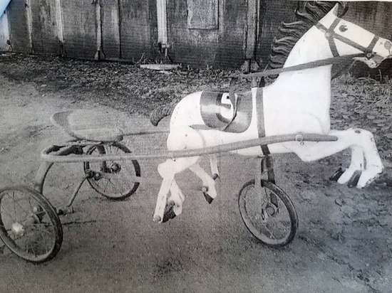 В Белгородской области украли педального коня