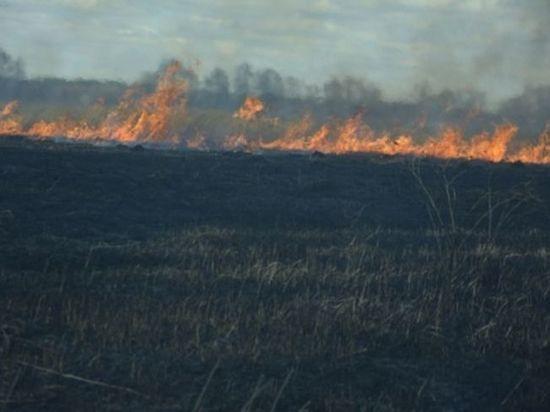 Причиной пожаров в деревнях Мордовии стал поджог сухой травы