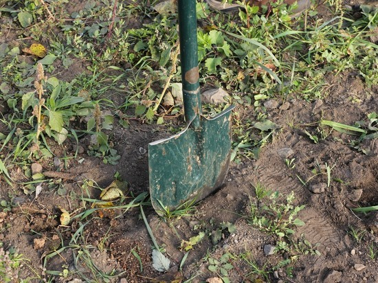 «Докопавшегося» до прокуратуры екатеринбуржца избили лопатой