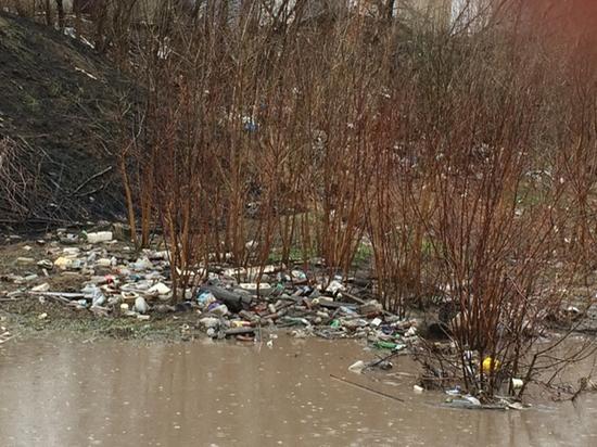 Реке Студенец в Тамбове присвоен максимальный уровень загрязнения