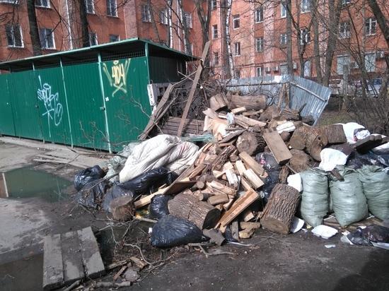 Как будут решать навалившиеся проблемы с вывозом отходов в Петрозаводске. ФОТО