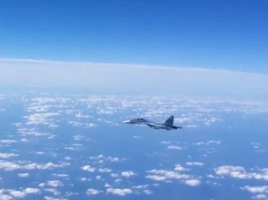Эксперты поспорили о «птичьей» причине крушения Су-30CМ в Сирии