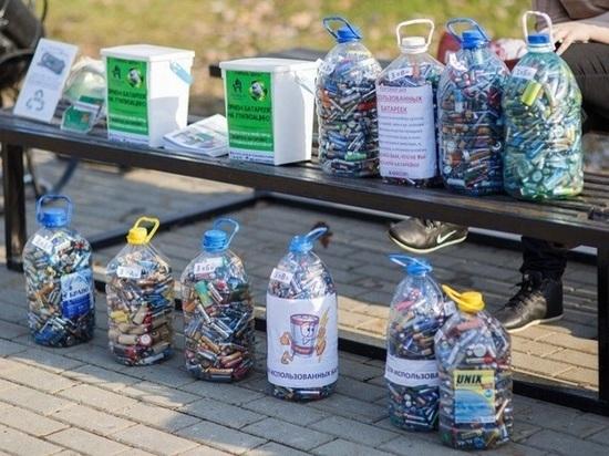 Экологический фестиваль помог собрать 100 килограммов батареек