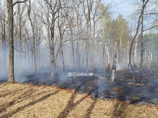 Парк 40-летия ВЛКСМ в Ульяновске закрыли из-за возгорания травы