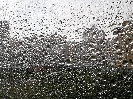 В Приангарье 7 мая прогнозируется усиление ветра и дождь