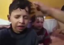«Трупы невинных детей» застили мозг голландцев