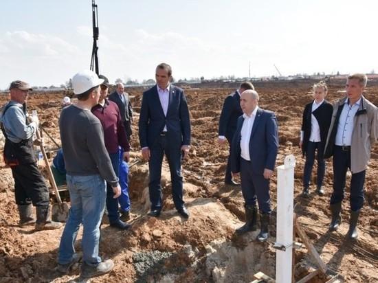Первый урожай тепличного комплекса «Новочебоксарский» ожидают к концу года
